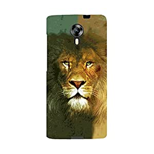 Digi Fashion premium printed Designer Case for Micromax Canvas Xpress 2 E313