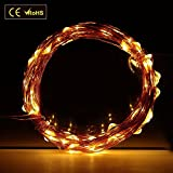 Diateklity LED String Lights Wire Lights - Waterproof Starry String Lights - D¨¦cor Rope Lights for Garden - Patio - Tree - Party - Xmas - Indoor and Outdoor Decor (100 Leds - 33 Ft - Warm White) (Copper)