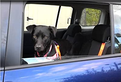 Vehicle Safety Tether/ Dog Seat Belt from Walk Your Dog With Love. The World's Best Dog Walking Tools.