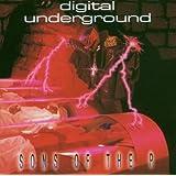 Sons of the P ~ Digital Underground