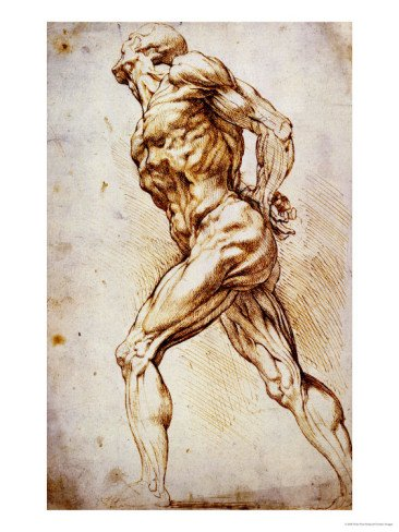 Anatomical Study: a Nude Striding to the Right His Hands Behind His Back Giclee Print Art (12 x 16 in)