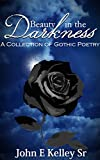 Beauty in the Darkness: A Collection of Gothic Poetry