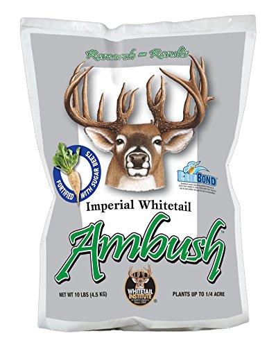 Whitetail Institute Imperial Ambush Food Plot Seed, 10 lb (Imperial Food Plot Seed compare prices)
