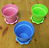 6 Plastic Flower Pots with Saucers - 6
