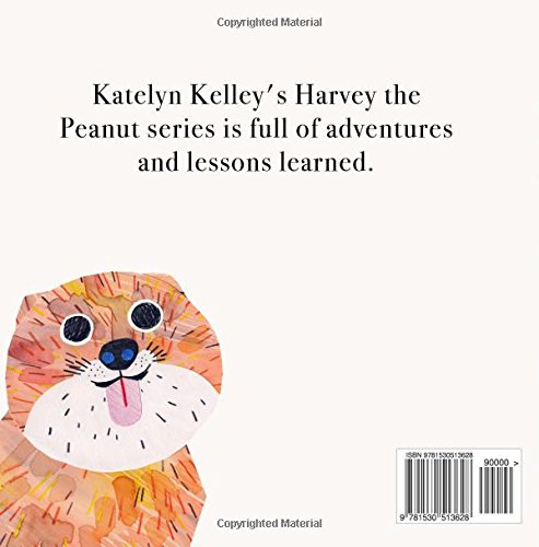 Harvey the Peanut Meets Baby: Volume 1