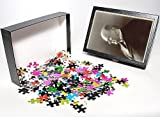 Photo Jigsaw Puzzle of Photo Portrait Mckinley from Mary Evans