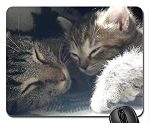 Sleeping beauties Mouse Pad, Mousepad (Cats Mouse Pad)
