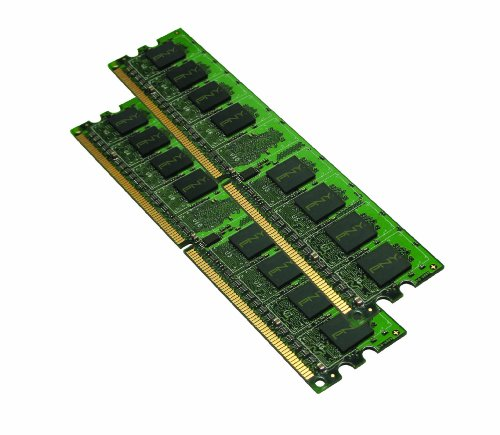 PNY OPTIMA 4GB (2x2GB) Dual Channel Kit DDR2 667 MHz PC2-5300 Desktop DIMM Memory Modules MD4096KD2-667 (If It Module For Pro Form compare prices)
