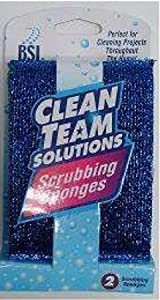 BSI Clean Team Solutions Scrubbing Sponges, Set of 2, 144-pack