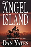 Angel island : a novel