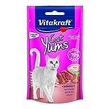 Vitakraft Katzensnack Cat Yums plus Leberwurst - 9 x 40g