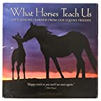 What Horses Teach Us Book