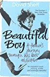 Beautiful Boy (1847391613) by David Sheff
