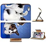 Liili Premium Apple iPhone 6 Plus i