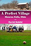 img - for A Perfect Village(Monroe Falls, Ohio) (Volume 1) book / textbook / text book