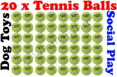 20 x Tennis Balls Social Play / Sports Cricket / Dog Toy Beach, Cricket etc