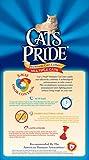 Cats Pride Premium Clay Cat Litter, 20-Pound Bag