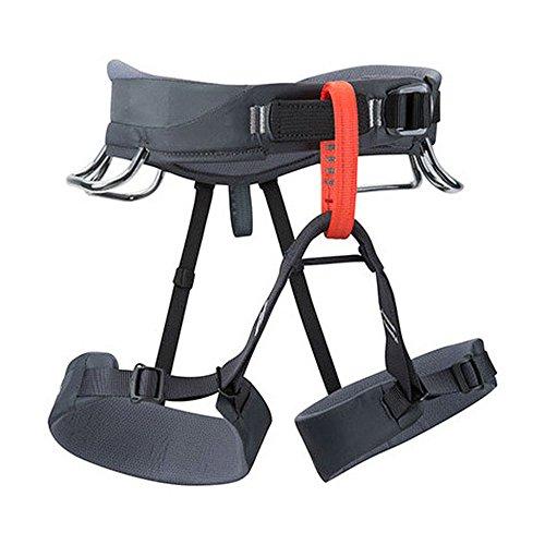 Black-Diamond-Momentum-Harness