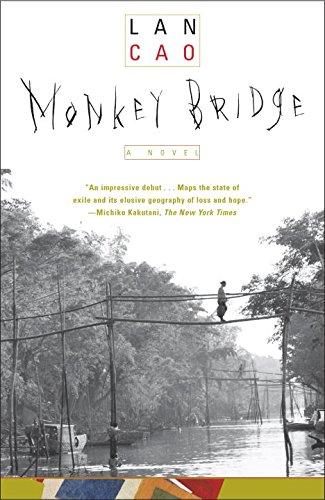 Monkey Bridge Picture