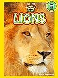 Lions (A