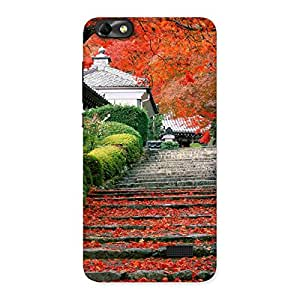 Delighted Stairs Garden Multicolor Back Case Cover for Honor 4C