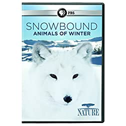 NATURE: Snowbound: Animals of Winter DVD