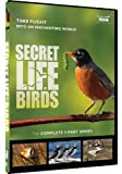 Secret Life of Birds  5 Part S