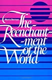 The Reenchantment of the World (English Edition)