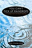 img - for You Can't Pick Up Raindrops book / textbook / text book