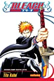 Bleach, Volume 1 (1421519755) by Tite Kubo