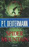 Spider Mountain: A Novel