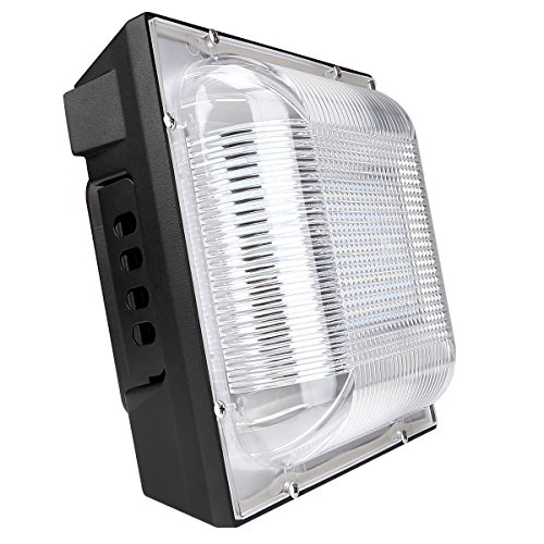 LE 70W LED Canopy Light Daylight White 5000K 400W HPSL Replacement 6300lm Waterproof Non-dimmable for Warehouse Workshop Hall Lobby (70w Led Bulb compare prices)