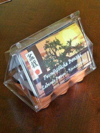 mini gew chshaus bonsai fern stlich mit samen der kirsche orangen jasmin und f cherahorn. Black Bedroom Furniture Sets. Home Design Ideas