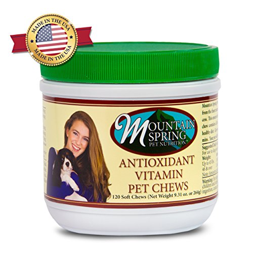 Mountain Spring Pet - Dog Vitamin - Antioxidant Soft Chew Supplement Treats (120