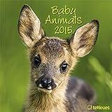 Baby Animals 2015 EU