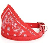 Dog Puppy Pet Bandana Scarf Paisley Pattern with Leather Collar Red