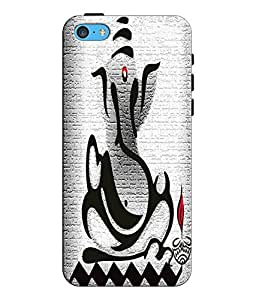 EU4IA Lord Ganesha Pattern MATTE FINISH 3D Back Cover Case For iPhone 5c - D321
