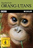Tagebuch der Orang-Utans title=