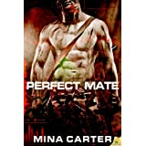 Perfect Mate ~ Mina Carter