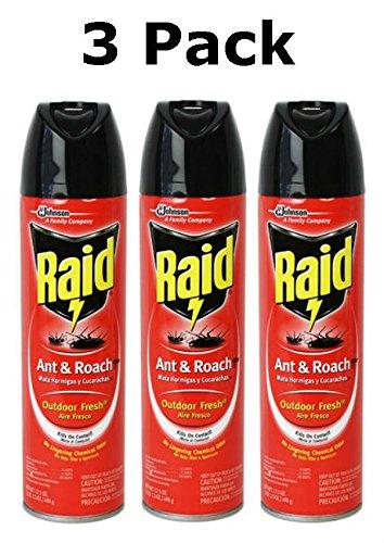 raid-ant-and-roach-killer-spray-outdoor-fresh-scent-175-ounce-3-pack