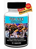 Fish Flex 12 Count 250 Mg - For Control of Common Bacterial Infections in Fish