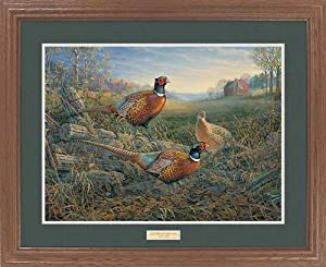 Autumn Afternoon Pheasants by Sam Timm Great Northern Art Premium Framed Print Open Edition