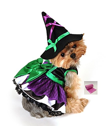Halloween Witch Dog Costume comes with Hat and bags - (Emerald Witch, S - Neck 10-12, Chest 14-18