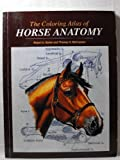 img - for Coloring Atlas of Horse Anatomy by Robert Kainer (1994-04-03) book / textbook / text book