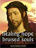 img - for Healing Hope for Bruised Souls book / textbook / text book