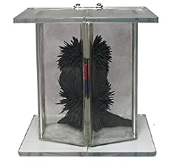 3D Magnetic Field Demonstrator - Magnetism Demonstration Chamber