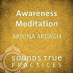 Awareness Meditation | Arjuna Ardagh