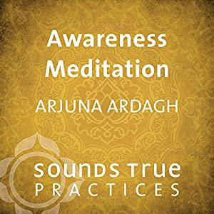 Awareness Meditation Speech