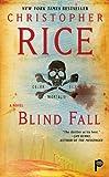 Blind Fall: A Novel