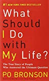 img - for What Should I Do with My Life?: The True Story of People Who Answered the Ultimate Question book / textbook / text book